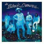 Black Crowes | By Your Side - The CD Exchange