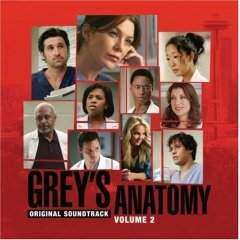 Soundtrack - Grey's Anatomy Vol.2 - CD - The CD Exchange