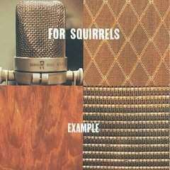 For Squirrels | Example - The CD Exchange