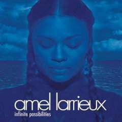 Larrieux, Amel | Infinite Possibilities,CD,The CD Exchange