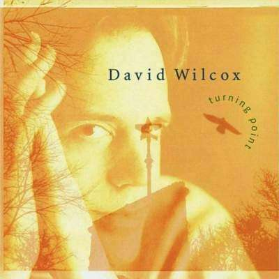 Wilcox, David | Turning Point,CD,The CD Exchange