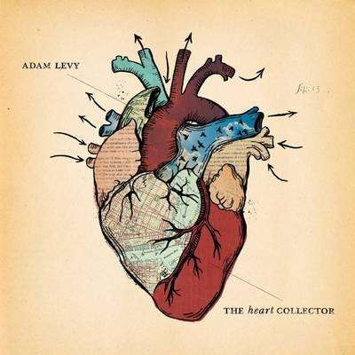 Levy, Adam | The Heart Collector,CD,The CD Exchange