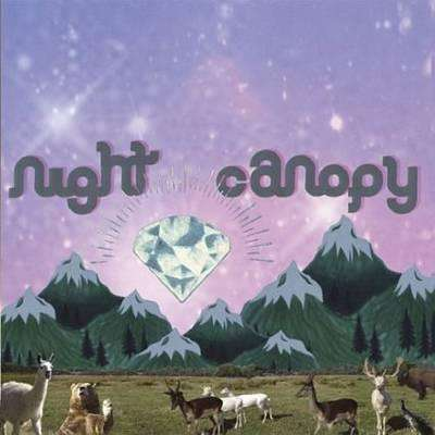 Night Canopy | Of Honey And Country,CD,The CD Exchange
