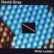 Gray, David | White Ladder,CD,The CD Exchange