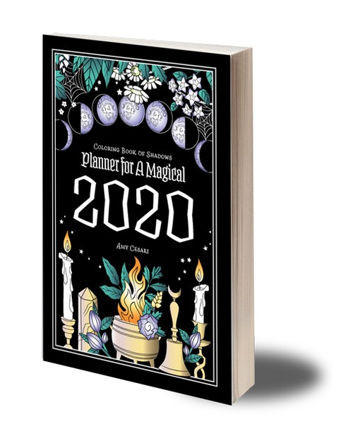 Planner for a magical 2020