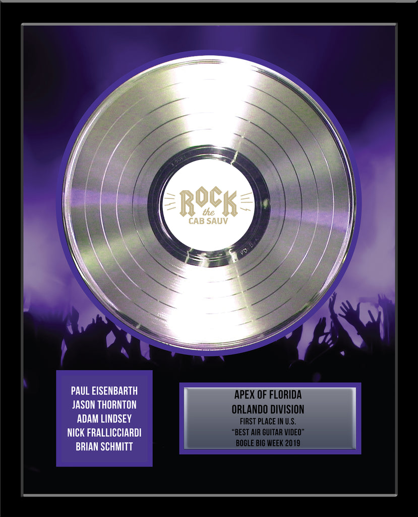 "12"" Platinum Record - Deluxe Framed Rockstar Award - Metalized Platinum Record"