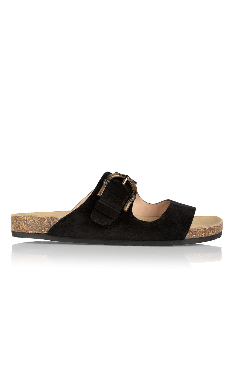 Greg Sandal in Midnight