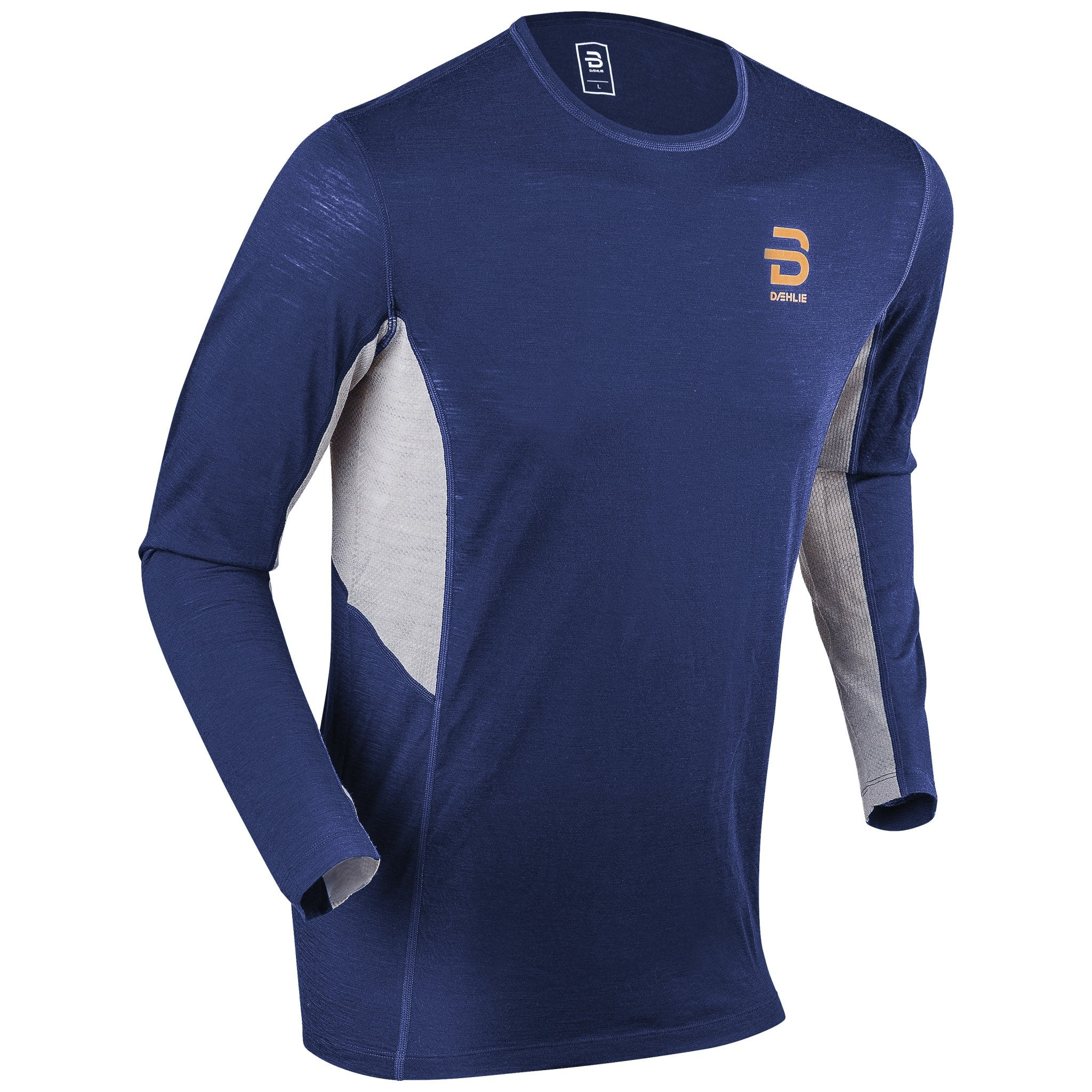 Daehlie Training Wool Mens Long Sleeve