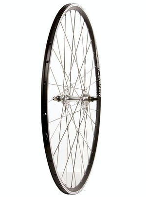 Wheel Shop Rear 700C Wheel Alex DA22 Black / Flip Flop TH-51 Silver, 32 DT Champion spokes, Nutted axle, 16T 1/8'' cog included