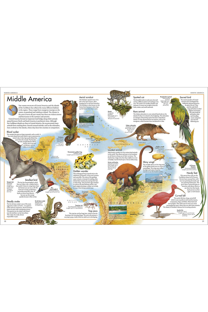 THE ANIMAL ATLAS