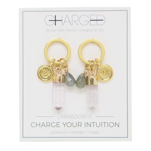 Labradorite & Gold Charm Earrings