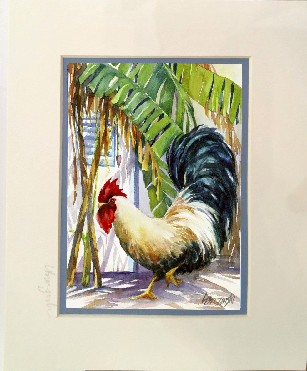 Matted Print  CARIBBEAN ROOSTER