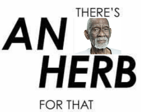 List of Dr  Sebi Approved Alkaline Vegan Herbs And Illnesses They
