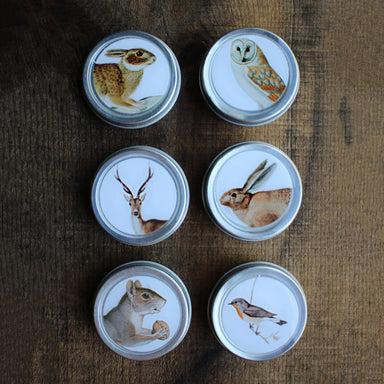 Forest Friends Mini Tins
