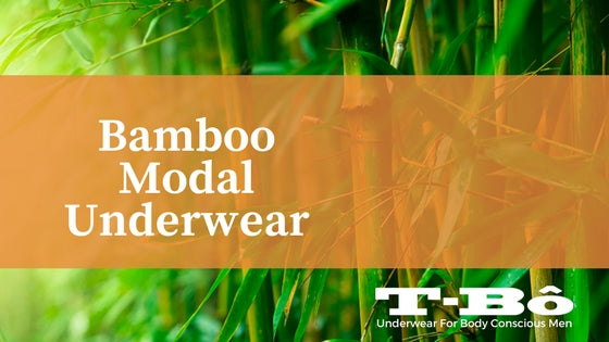 <center>Things you need to know about Bamboo Modal Underwears</center>