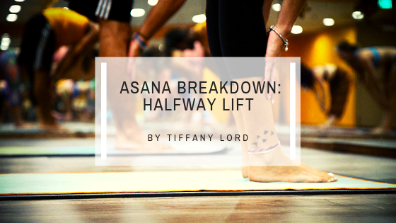 Basic Yoga Posture Breakdown: Halfway Lift