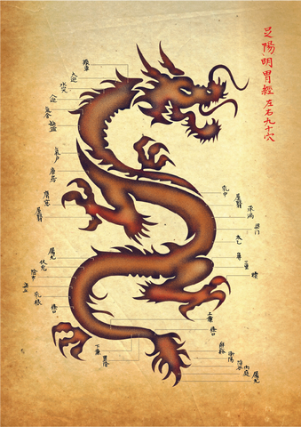 Acupuncture Dragon - Sticker