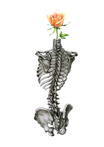 Spine Rose - Sticker