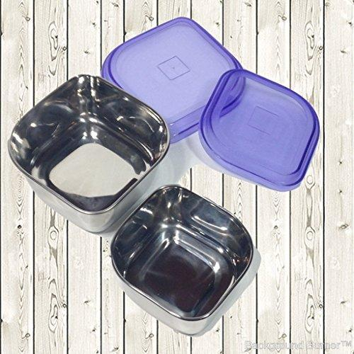 Stainless Steel 10 Oz and 6 Oz Snack Containers  Set Of 2