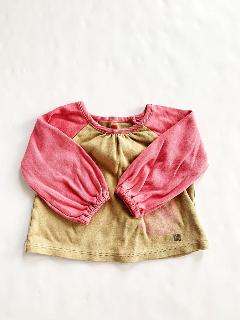 Tea Collection top size 6-12m-Fresh Kids Inc.