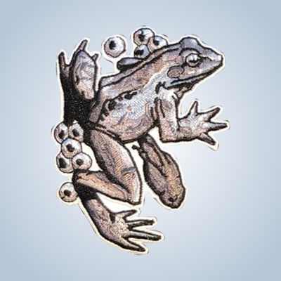 Iron-on patches Chronic Ink Artist Series - Frog