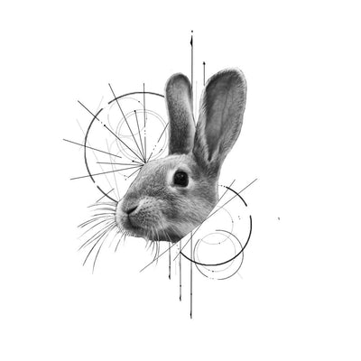 Geometric Rabbit