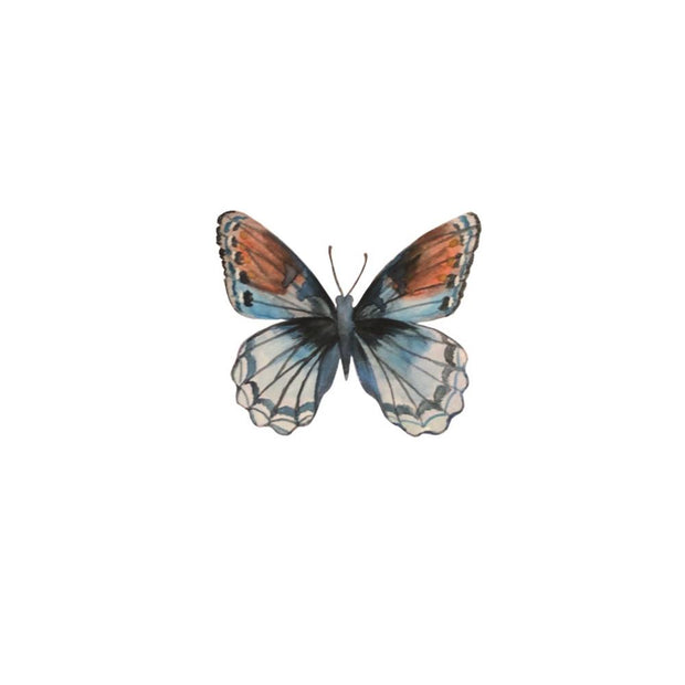Painterly Butterfly #3