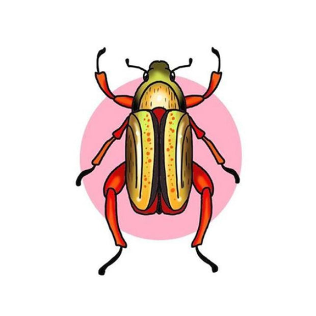 Yellow and Orange Beetle with Pink Circle