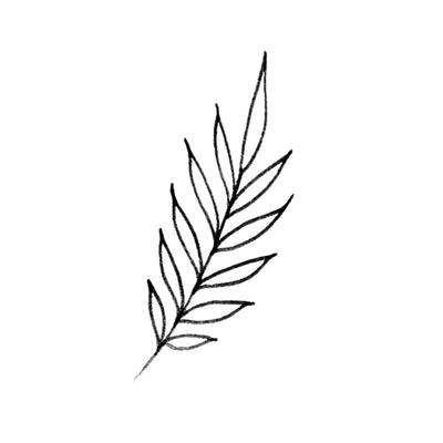 Simple Palm Leaves