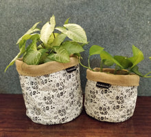Chic Planter Wrap  (Muse)
