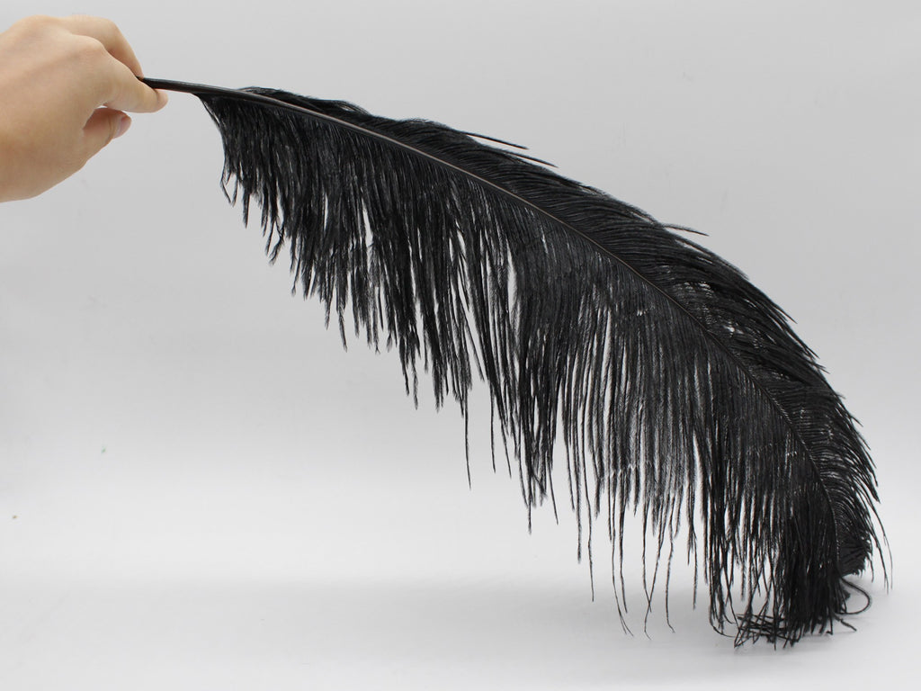 "Black Ostrich Feathers Drabs (19-22"")"