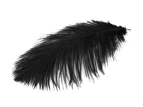 Black ostrich feathers - photo#21