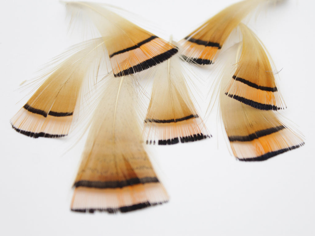 Golden Pheasant Tippet Feathers