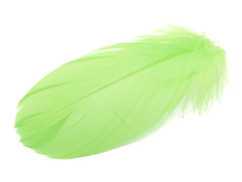 "Green Goose Coquille Feathers (3-5"")"