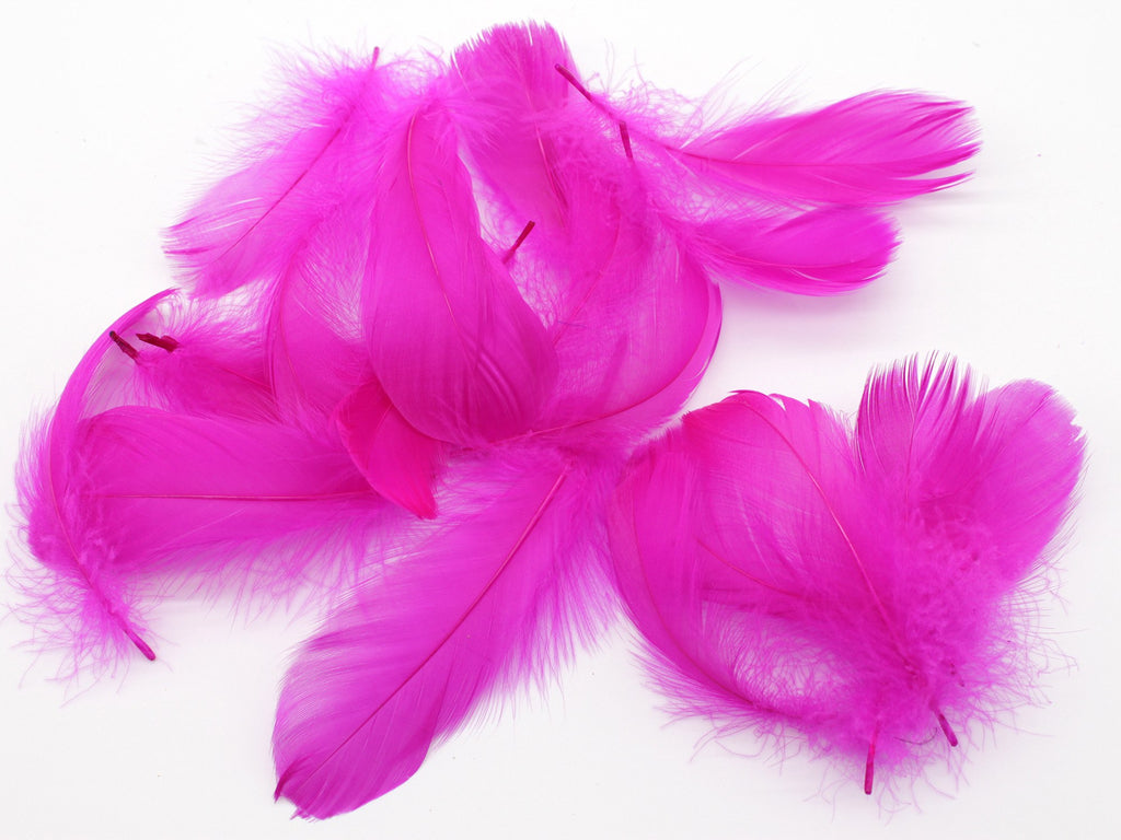 "Magenta Goose Coquille Feathers (2-3"")"