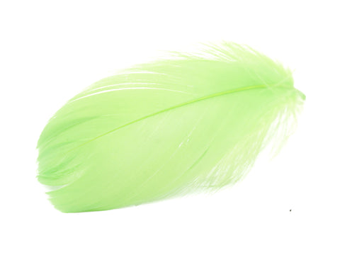 "Green Goose Coquille Feathers (2-3"")"