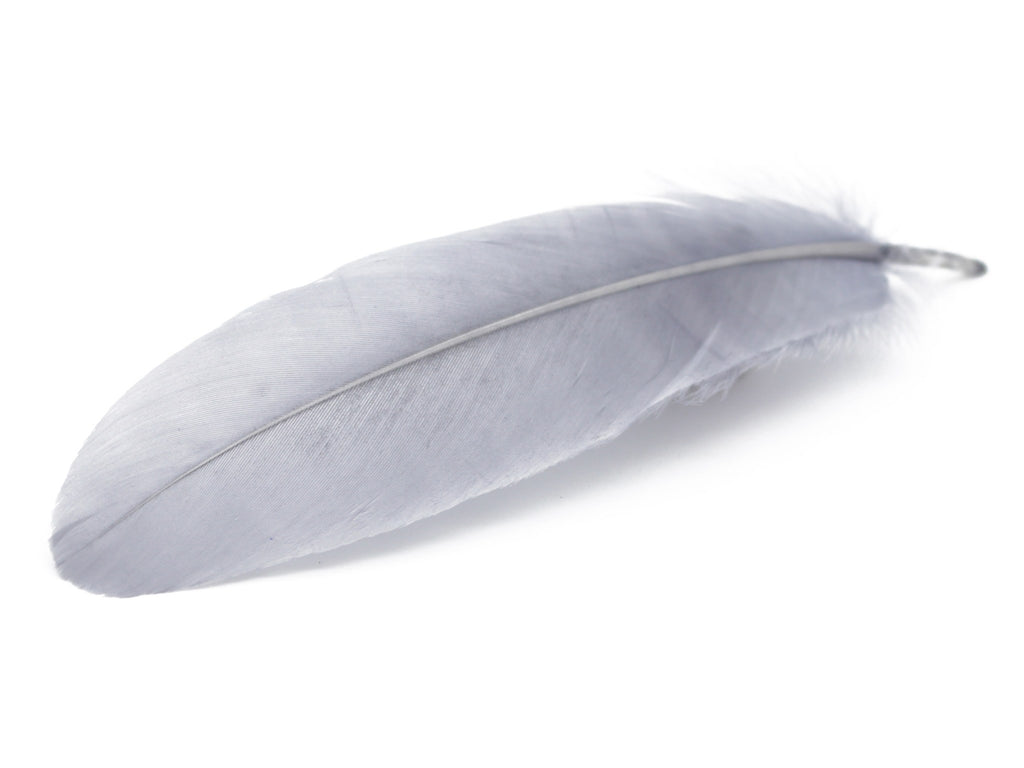 "Gray Goose Satinettes Loose Feather (6-8"")"