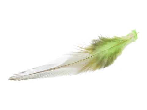 Green Rooster Saddle Feathers