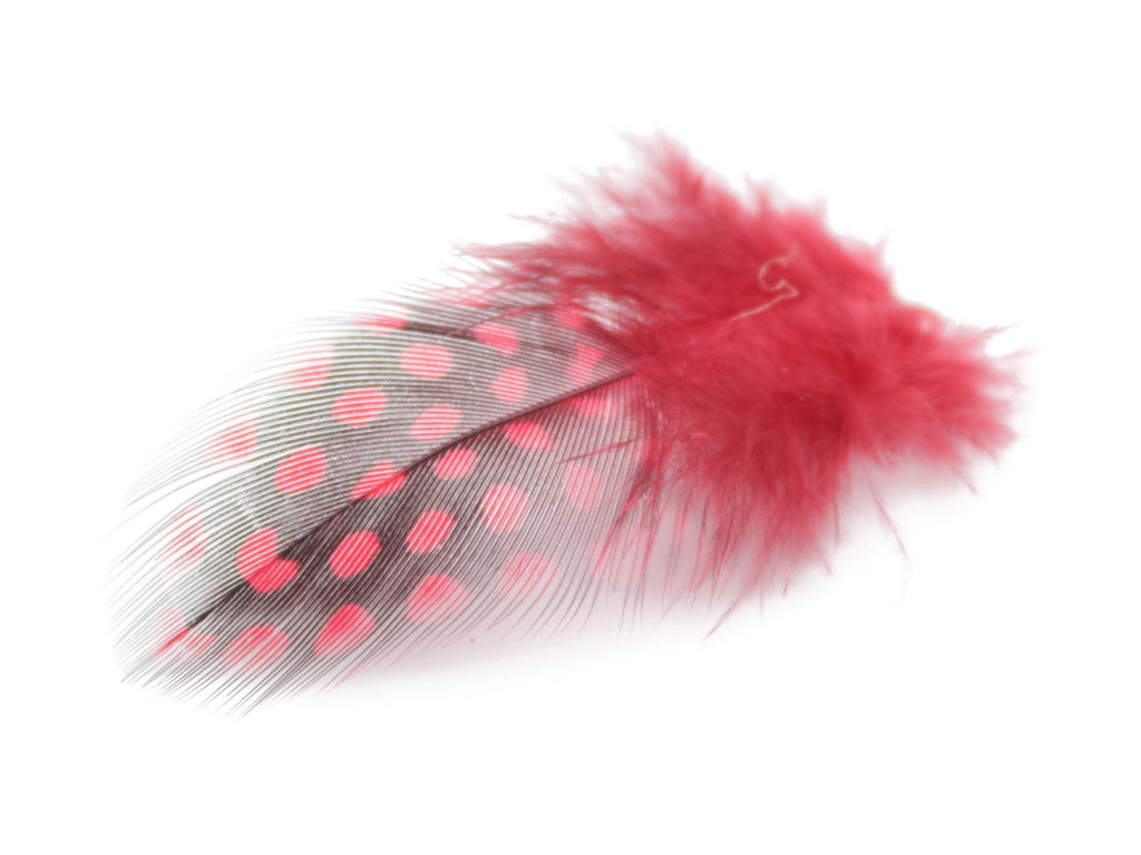 Red Guinea Fowl Plumage Feathers