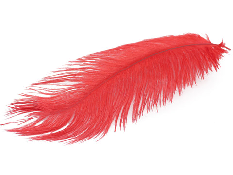 "Red Ostrich Feathers Drabs (19-22"")"