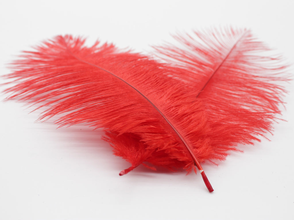 "Red Ostrich Feathers Drabs (13-16"")"