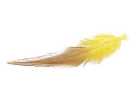 Yellow Rooster Saddle Feathers