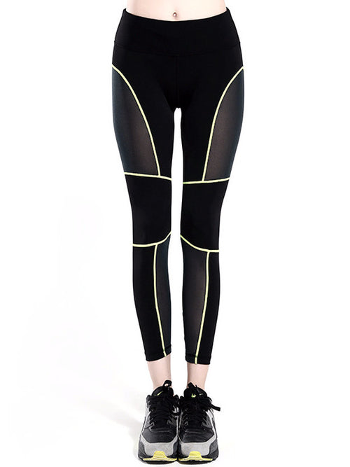 Outline Mesh Leggings