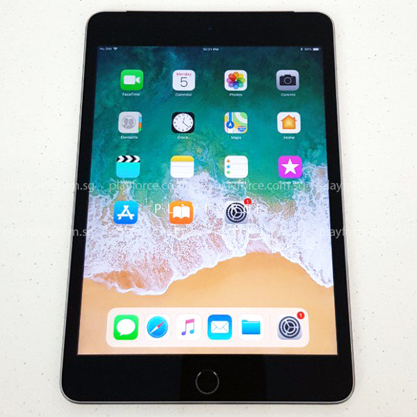iPad Mini 4 (16GB, Wi-Fi, Space Grey)