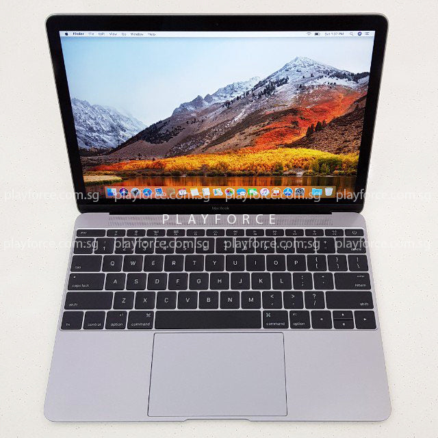 Macbook 2016 (12-inch Retina Display, 256GB, Space)