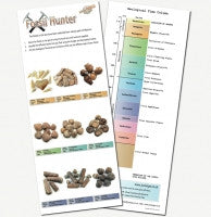 Fossil Hunter Activity Box