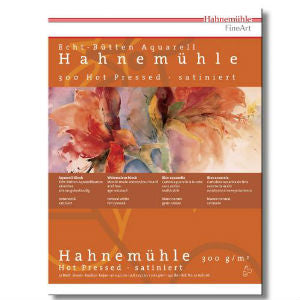 HAHNEMUHLE Watercolour Paper 300gsm (2 sheets)