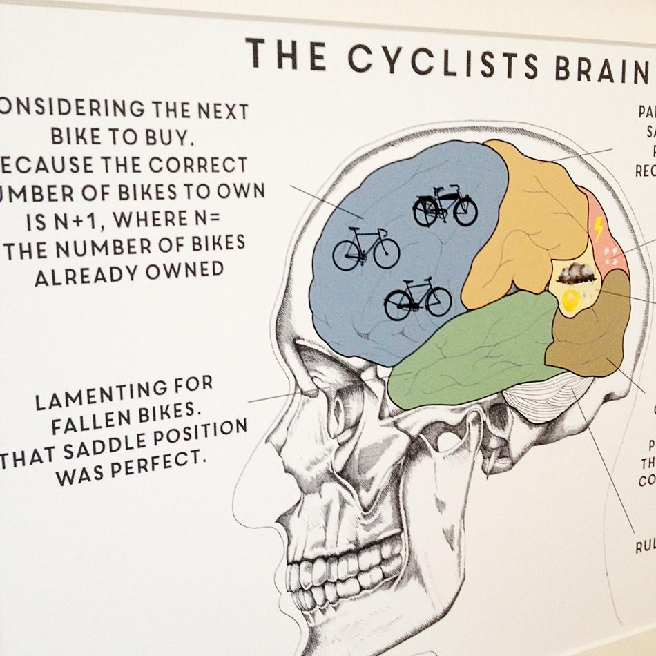 The Cyclist's Brain Print  Print - Betsy Benn
