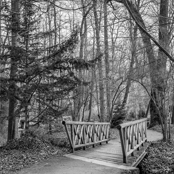 Wooden Bridge II