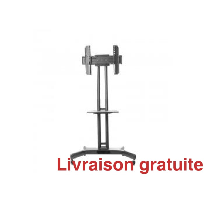 Support à TV sur roulettes / Floorstand Bracket on wheels - Sports500.com